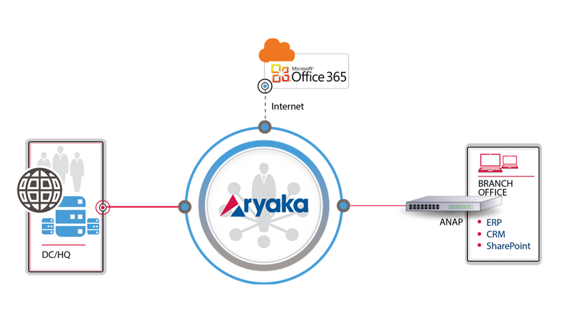 Network for Office 365