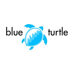 https://blueturtle.co.za/