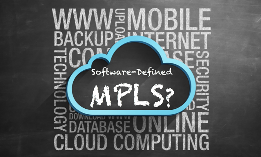 What if You Could Software-Define MPLS?